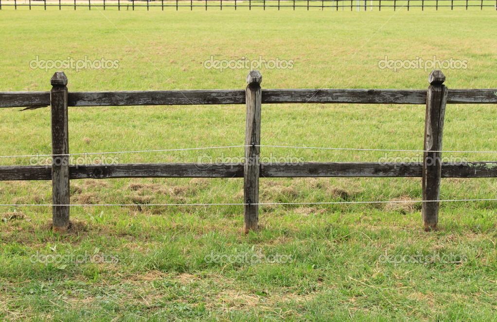 Wooden fence on a green meadow used for horse containment  Stock Photo #6937225