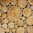 Stok fotoğraf: Stacked Logs Background