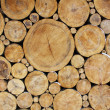 Stacked Logs Background — Foto de stock #7195542
