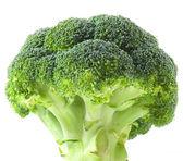 Isolated broccoli — Stock Photo