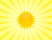 The sun — Stock Vector