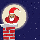 Santa_Owl — Vector de stock