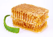 Aloe and honeycomb — Stock Photo