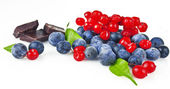 A handful of blueberries and slices of chocolate — Stockfoto
