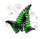 Painted fern leaves — Stock Vector