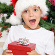 Royalty-Free Stock Photo: Happy surprised kid with christmas present