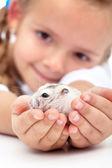 удовлетворить мой маленький приятель - девочка и ее хомяка — Стоковое фото
