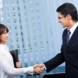 Two happy businesspeople, or businessmand client, handshaking — Stock Photo #7511016