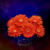 Orange gerbera flower in vase — 图库照片