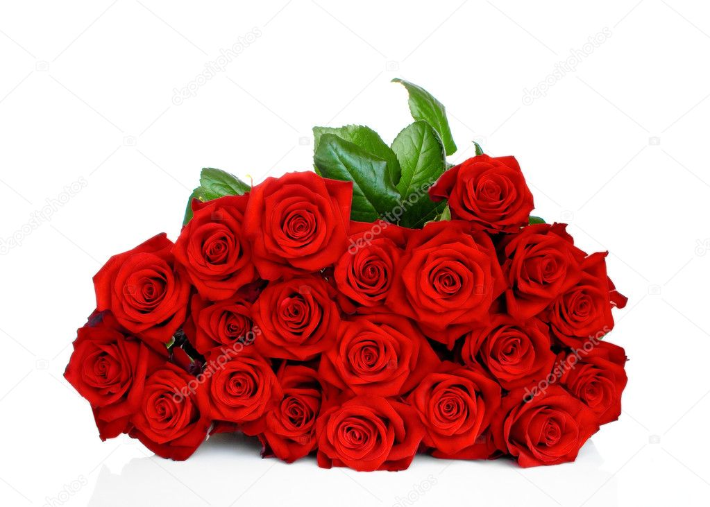 Bunch of red roses isolated on white background — Zdjęcie stockowe #6852232