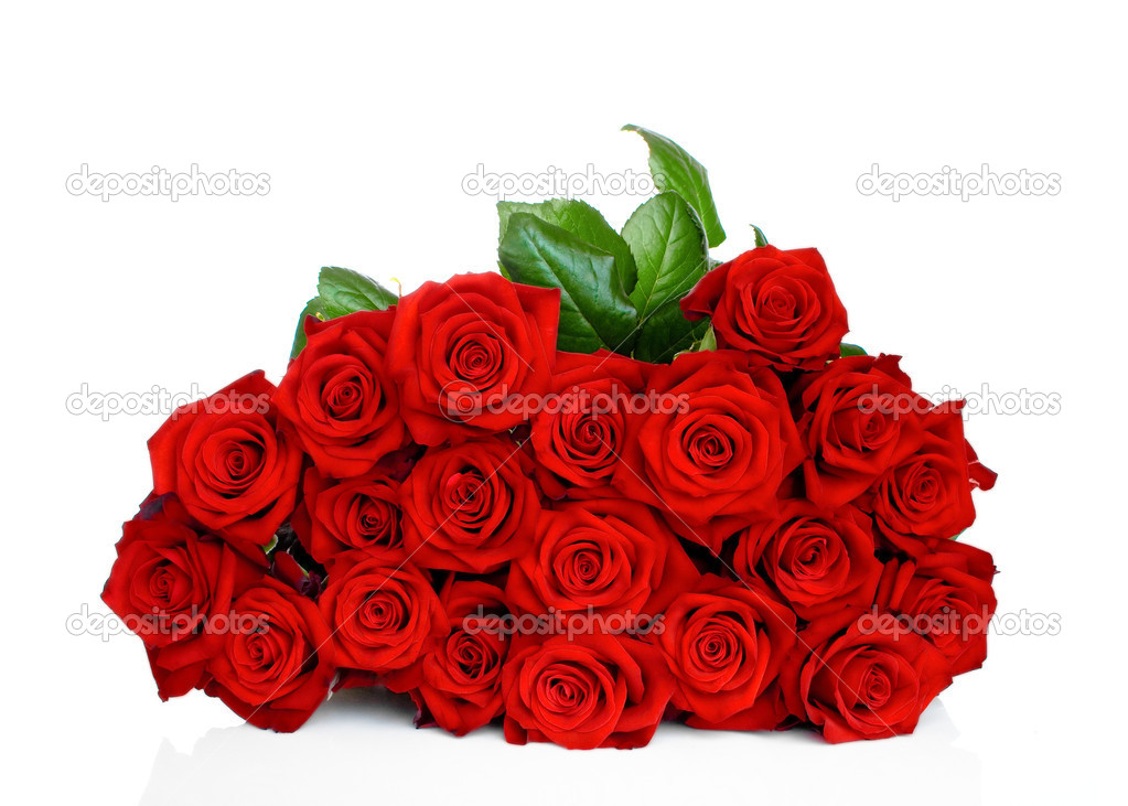 Bunch of red roses isolated on white background — Photo #6852232