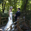 Love on the wooden bridge — Stock Photo #6752446