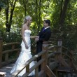 Love on the wooden bridge — Stock Photo