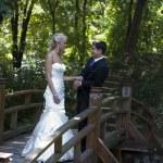 Love on the wooden bridge — Stock Photo #6752446