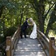 Stock Photo: Love on the bridge
