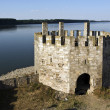 The fortress on the Danube — Stockfoto