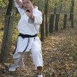 Karate and nunchaku — Stock Photo