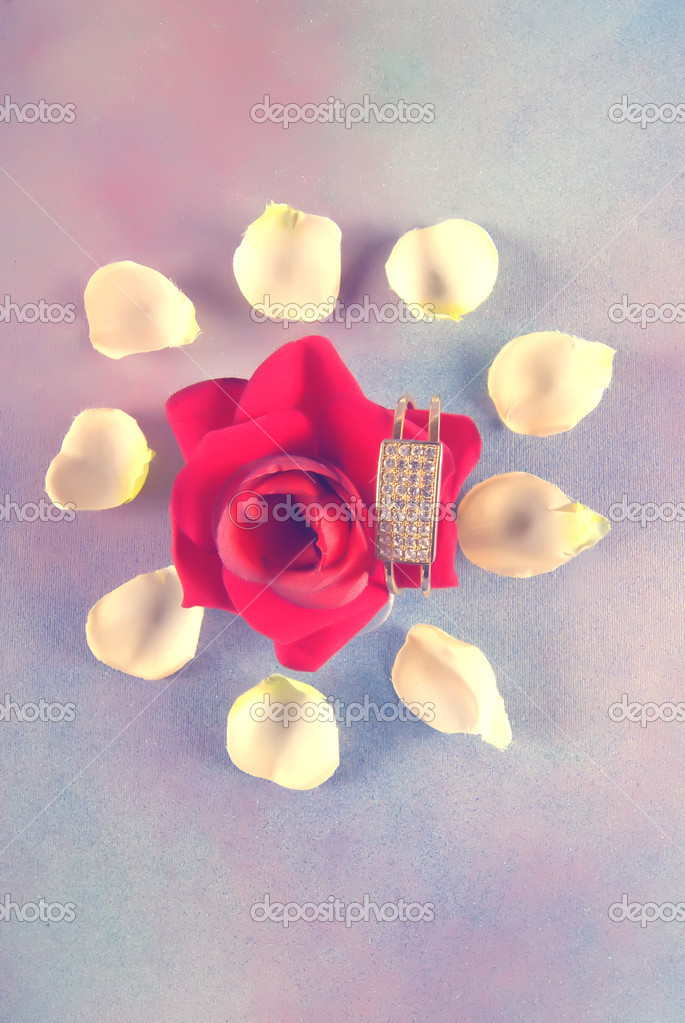 Big red rose with bracelet attached and white petals isolated on textured background — Stock Photo #6810558