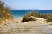Boardwalk to the beach — Stock Photo