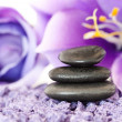 Stones with purple flower — Stock Photo