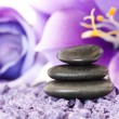 Stock Photo: Stones with purple flower