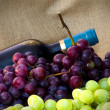 Wine industry — Stock Photo #7121690