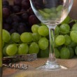 Wine industry — Stock Photo #7121713