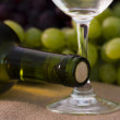 Wine industry — Stock Photo #7121794