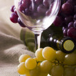 Wine industry — Stock Photo #7121842