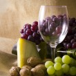 Stock Photo: Wine industry