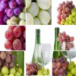 Collection of grapes and wine — Stock Photo
