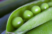 Peas, vegetables and natural ingredients — Stock Photo