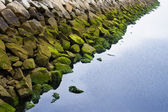 Stone in the sea water — Stock Photo