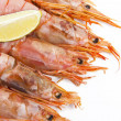 Fresh seafood, shrimps and crustaceans — Stock Photo