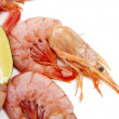 Fresh seafood, shrimps and crustaceans — Stock Photo #7422344