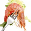 Fresh seafood, shrimps and crustaceans - Stock Photo