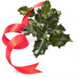 Branch of holly green and red ribbon — Stock Photo