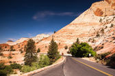 Empty road in Zion — Stock Photo
