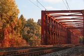 De ijzeren brug — Stockfoto