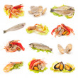 Stock Photo: Shellfish and fish