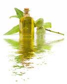 Mandlový olej — Stock fotografie