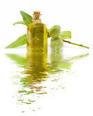 Almond oil — Стоковое фото