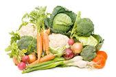 Scala aan verse groenten — Stockfoto