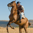Rider and his horse — Stock Photo