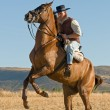 Rider and his horse — Stock Photo #6993137