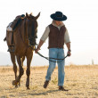 Rider and his horse — Stock Photo #6993424