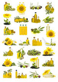 Olive oil and sunflower oil — Stock Photo