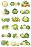 Cauliflower, cabbage and broccoli — Stock Photo
