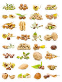 Mixed nuts — Foto Stock