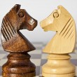 Black and white horse chess — Stock Photo